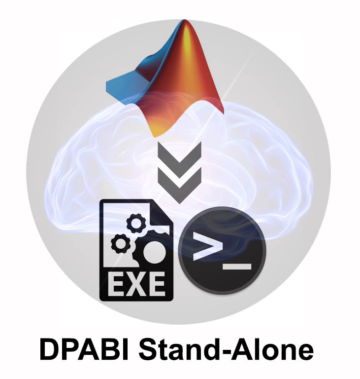 DPABI: a toolbox for Data Processing & Analysis for Brain Imaging